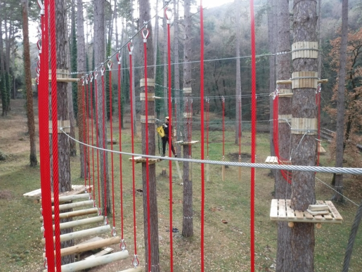 Lianes and Erkules Ropes for adventure parks