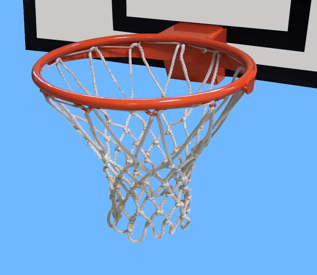 Professional Basket
