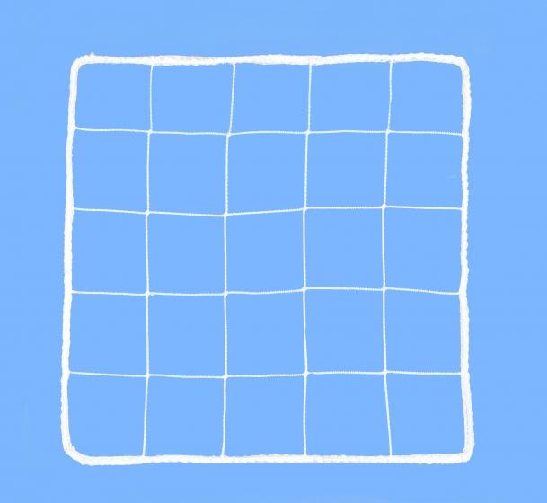 Fencing net 100x100 mm