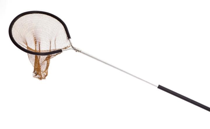 Trout landing net